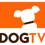 Sling TV launches Comedy Dynamics & DOGTV channels