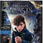 Fantastic-Beasts-and-Where-to-Find-Them-4k-Blu-ray-600px
