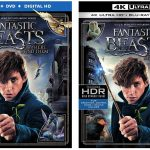 'Fantastic Beasts and Where to Find Them' Blu-ray, 3D & 4k Blu-ray