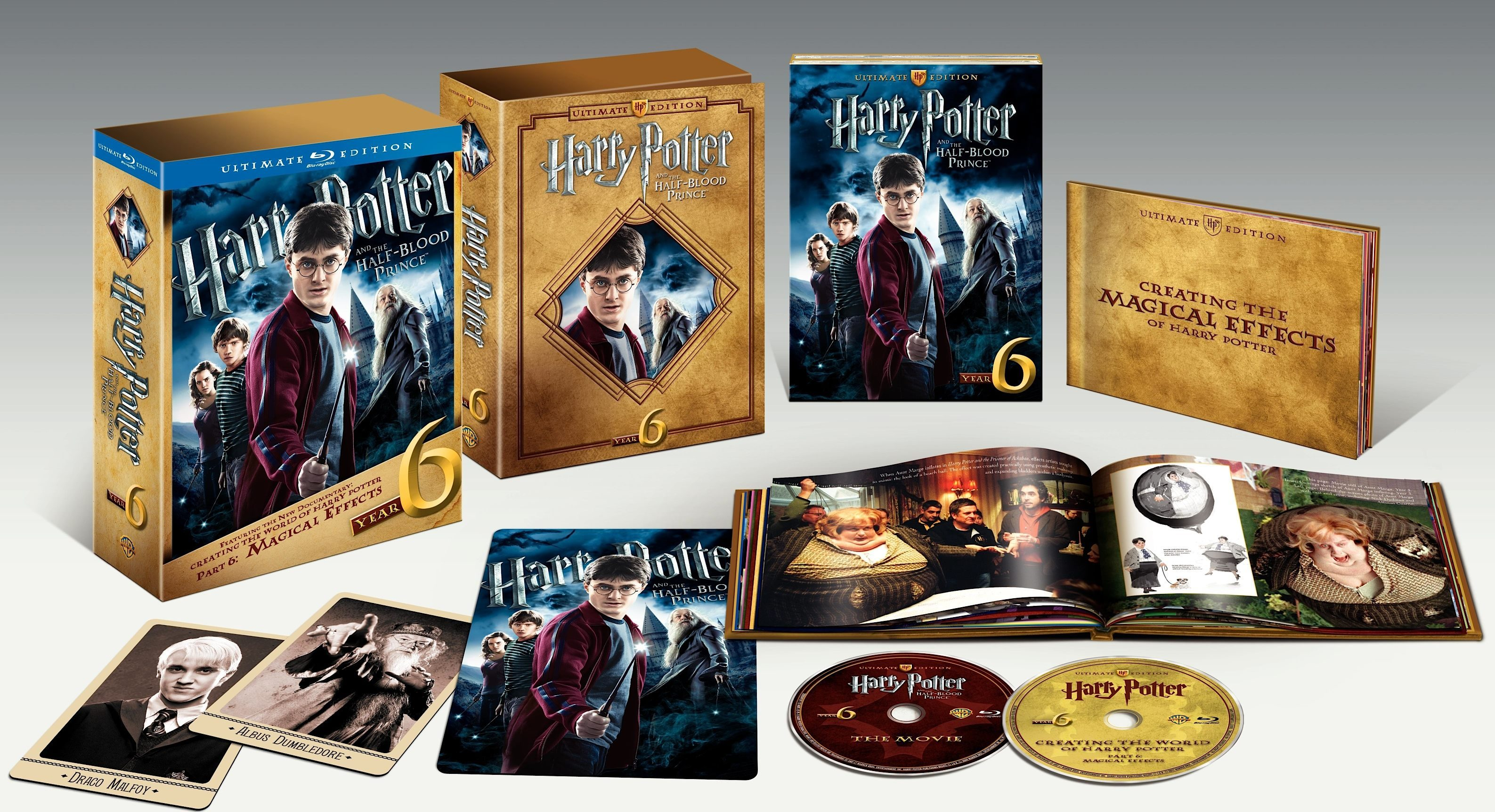 harry porter review