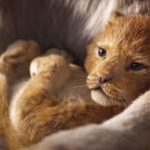 'The Lion King' 1st Official Teaser Released by Disney