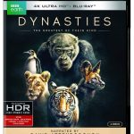 BBC Earth's 'Dynasties' Coming to 4k Blu-ray & DVD