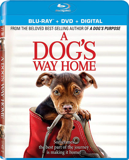 A-Dog's-Way-Home-Blu-ray-Combo-420px