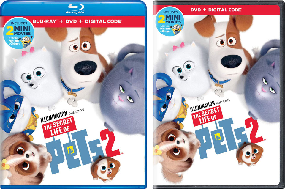 The Secret Life of Pets 2 Blu-ray, DVD & Digital Available