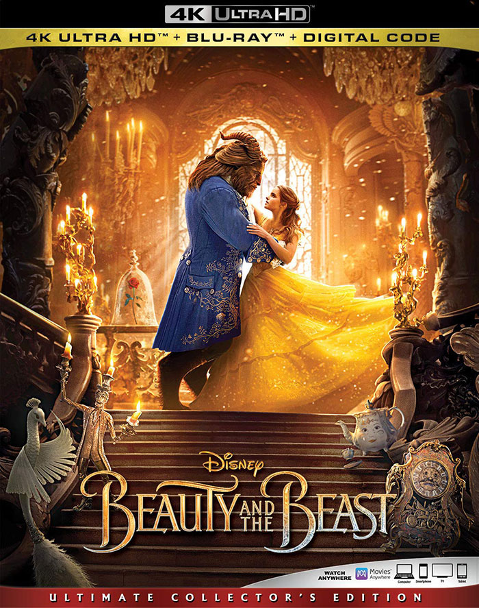 [R00y]Beauty and the Beast (2017) UHD Bluray 10bit HDR HEVC [DD 5.1 Hindi + DD 5.1 English] MSubs
