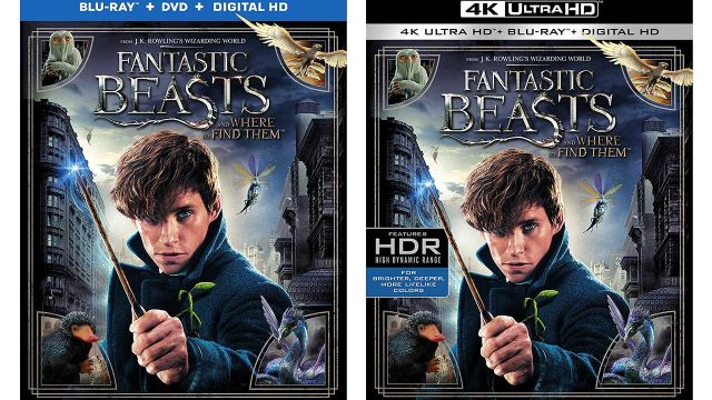Fantastic-Beasts-and-Where-to-Find-Them-Blu-ray-2up.jpg