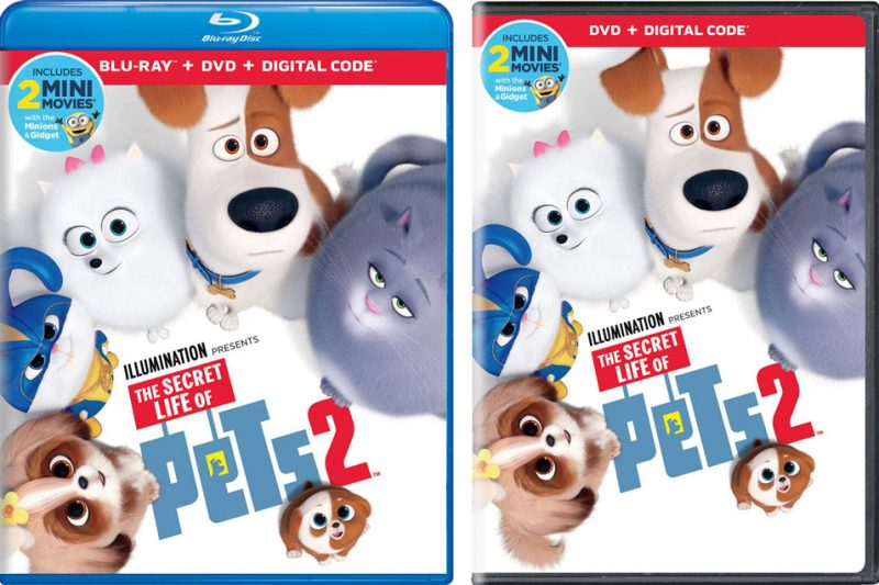 The-Secret-Life-of-Pets-2-Blu-ray-case-2up-960px.jpg
