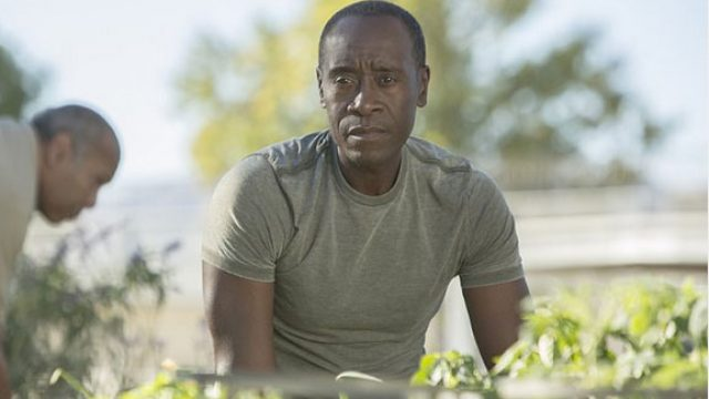 house-of-lies-still-don-cheadle.jpg